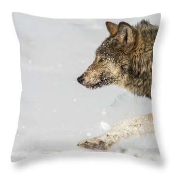 W36 Throw Pillow