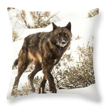 W38 Throw Pillow