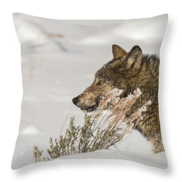 W39 Throw Pillow