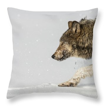 W40 Throw Pillow
