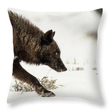 W41 Throw Pillow