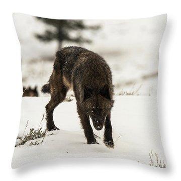 W45 Throw Pillow