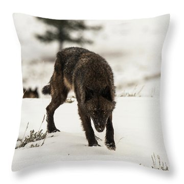 W45 Throw Pillow