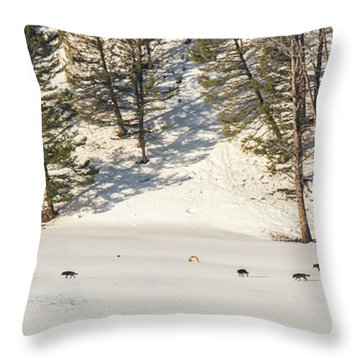 W48 Throw Pillow