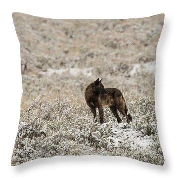 W49 Throw Pillow