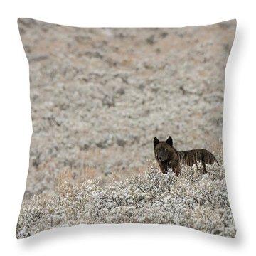 W50 Throw Pillow