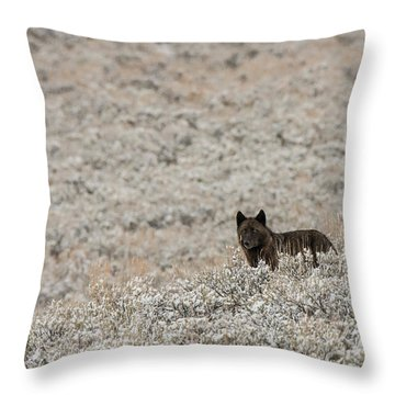 W50 Throw Pillow