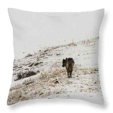 W52 Throw Pillow