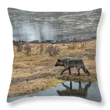 W53 Throw Pillow