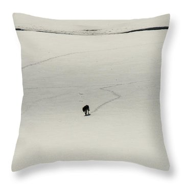 W54 Throw Pillow