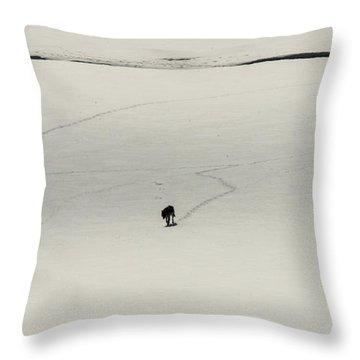 W54 Throw Pillow