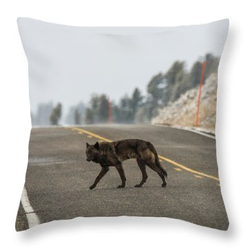 W55 Throw Pillow