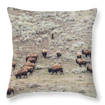 W56 Throw Pillow