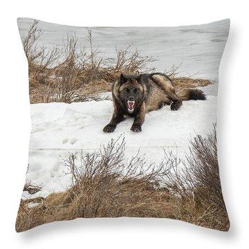 W57 Throw Pillow