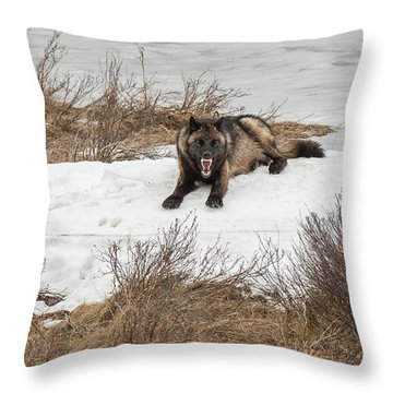 W57 Throw Pillow