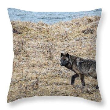 W58 Throw Pillow