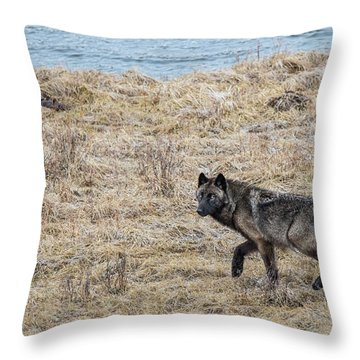 W58 Throw Pillow
