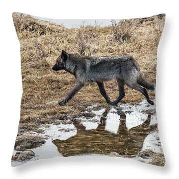 W60 Throw Pillow