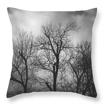 Throw Pillow featuring the photograph Waiting Bird by Dheeraj Mutha