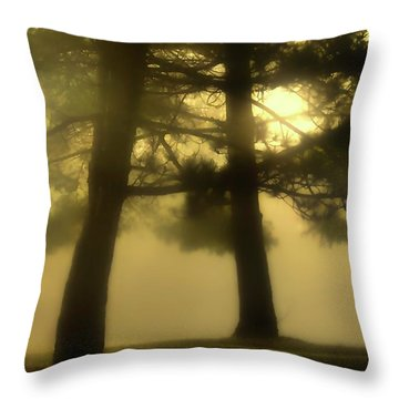 Waking From A Dream Throw Pillow