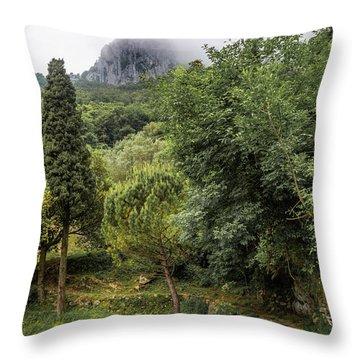 Walking Along The Mountain Path Throw Pillow