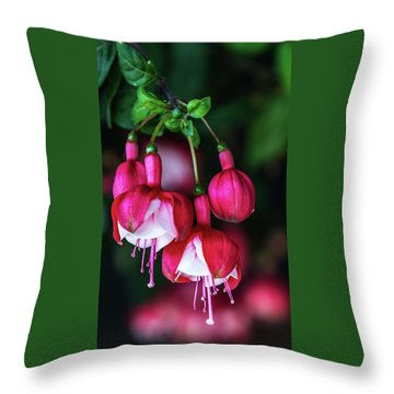 Throw Pillow featuring the photograph Wallpaper Flower by Dheeraj Mutha