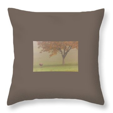 Throw Pillow featuring the photograph Walnut Farmer, Beynac, France by Mark Shoolery