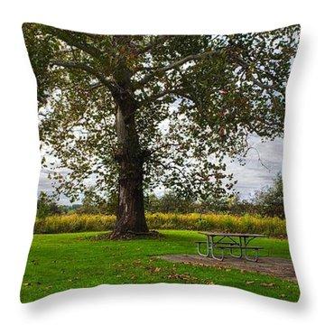 Walnut Woods Tree - 1 Throw Pillow