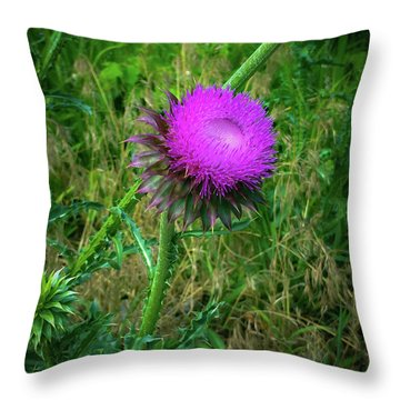 Wanna Be In Scotland Throw Pillow