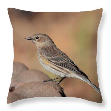 Warbler 4231 Throw Pillow