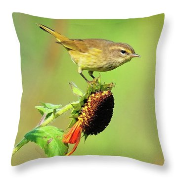 Throw Pillow featuring the photograph Warbler by Debbie Stahre