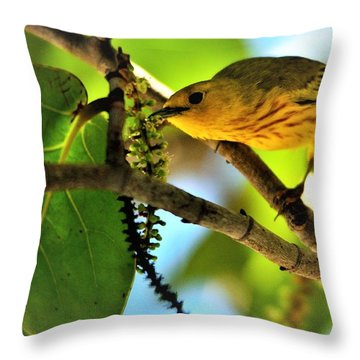 Warbler's Delight Throw Pillow