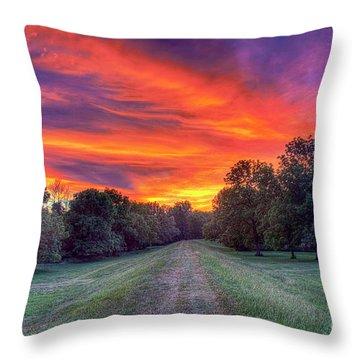 Warm Summer Night Throw Pillow