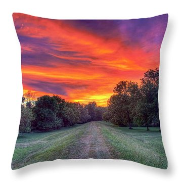 Warm Summer Night Throw Pillow