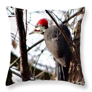 Warypileated Throw Pillow