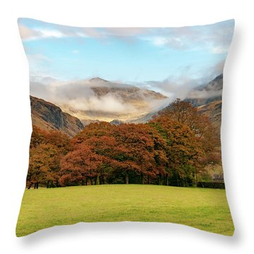 Wast Throw Pillows