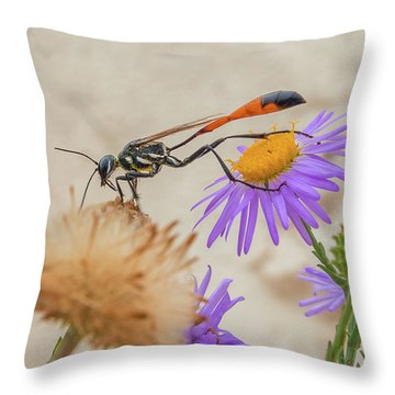 Wasp At White Sands Throw Pillow