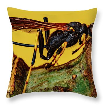 Wasp Just Had Enough Throw Pillow