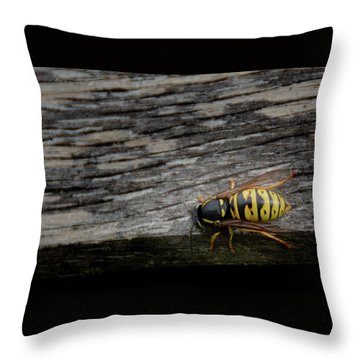 Wasp On Wood Throw Pillow