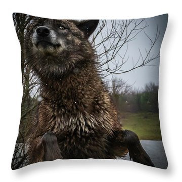 Watch The Eyes Throw Pillow