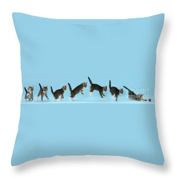 Throw Pillow featuring the photograph Watch. This Is How I Attack. by Warren Photographic