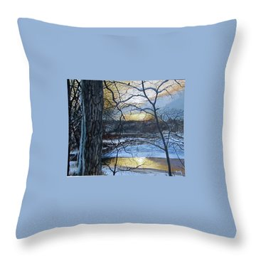 Throw Pillow featuring the painting Watcher by William Brody