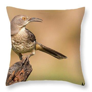 Watchful Thrasher Throw Pillow