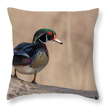 Watchful Wood Duck Throw Pillow