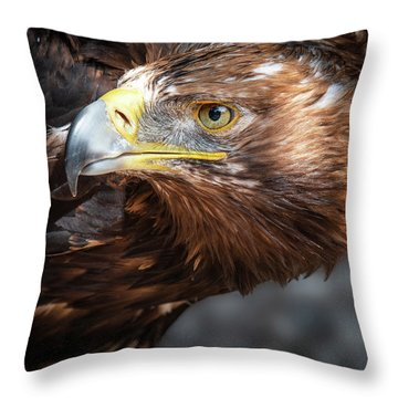 Watching Eagle Throw Pillow