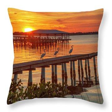 Watching The Sunset Throw Pillow