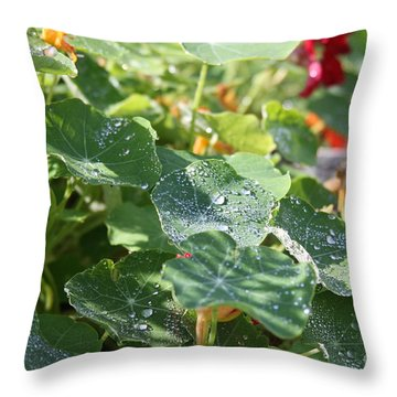 Throw Pillow featuring the photograph Water Beads After The Summer Rain by Tatiana Travelways