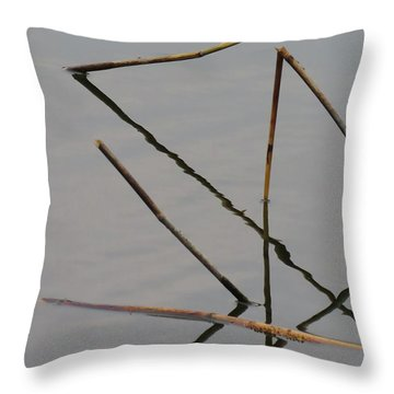 Throw Pillow featuring the photograph Water Construction by Attila Meszlenyi