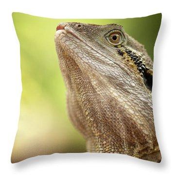 Water Dragon. Throw Pillow
