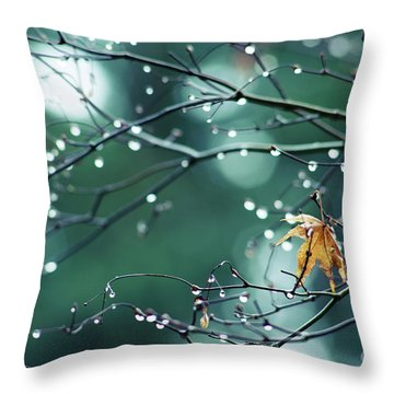 Throw Pillow featuring the photograph Water Droplets On Twigs Vii by Charmian Vistaunet